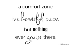 Comfort Quote Comfort Quotes Like Success