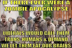 Meme Zombie - what liberals would probably do during a zombie apocalypse meme