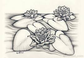 design flower rose drawing 40 beautiful flower drawings and realistic color pencil drawings