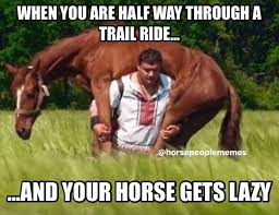 Lazy People Memes - tag a friend with a lazy pon pon horse people memes