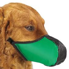 Comfortable Dog Best Dog Muzzle 2016 2017 Top Reviews Bestalyze