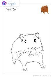 Coloriage De Hamster Best Of 247 Best Coloriage Imprimer Et Activité