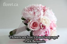 wedding flowers quote flowers are s truest language card inspiration floral