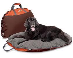 Burrowing Dog Bed Types Of Washable Dog Beds Washabledogbed Net