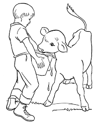 feeds the calf farm animal coloring pages animal coloring pages