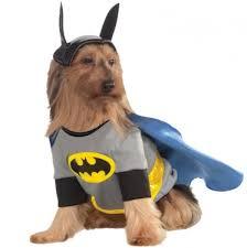 Batman Robin Dog Halloween Costumes Robin Pet Costume Pet Costumes