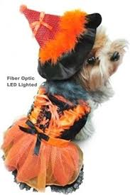 costumes u0026 fun stuff dogs daisey u0027s doggie chic