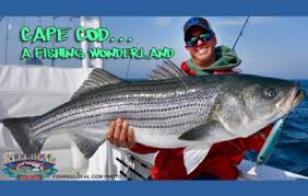 Cape Cod Kids Fishing - kayak rentals cape cod stand up paddle boards sup hunting