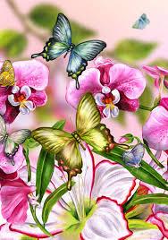 cypress fine art licensing насекомые pinterest butterfly