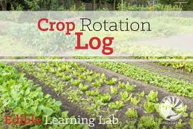 crop rotation log modern steader
