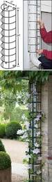 hide the downspout with a trellis eco pinterest gardens