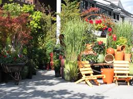 Terraced House Backyard Ideas Others Bushes To Plant In Front Of House Ravenna Gardens