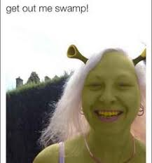 Funny Vine Memes - tumblr shrek dank memes pinterest shrek smosh and photos