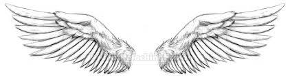 wings by kiken on deviantart