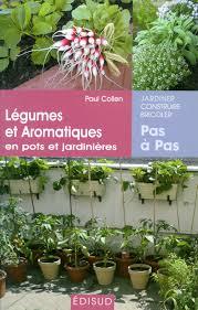 decoration avec des pots en terre cuite les erreurs à éviter dans la culture des plantes aromatiques