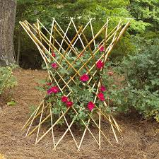 Climbing Plant Supports - 48 in h hourglass peeled willow country flower plant support