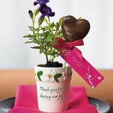 Flower Favors by Mini Flower Garden Plant Pots Favors The Knot Shop