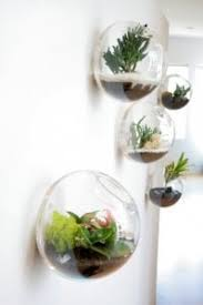 Goldfish Bowl Vase 6pcs Set Wall Hanging Glass Fishbowl Wall Bubble Terrarium Wall