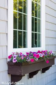 Flowers For Window Boxes Partial Shade - 5 tips for gorgeous window boxes the lilypad cottage