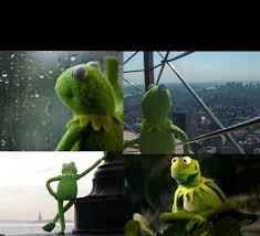 Kermit Meme Generator - sad kermit blank template imgflip