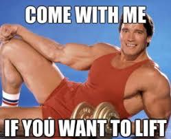 Arnold Meme - arnold schwarzenegger memes top 20 terminator memes