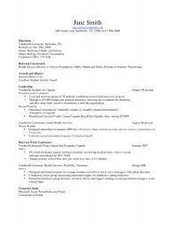 Best Professional Resume Templates Free Examples Of Resumes 81 Glamorous Resume Paper U201a Cover Letters For