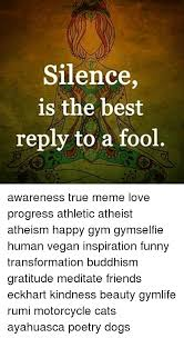 Gratitude Meme - silence is the best reply to a fool awareness true meme love