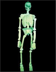5 u0027 glow in the dark prop skeleton halloween decoration u2022 29 98