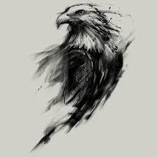 eagle pinteres