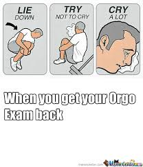 Organic Chemistry Meme - a guide to surviving organic chemistry the 3 l s of happiness