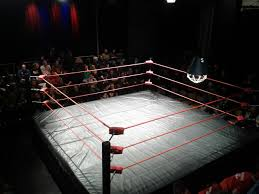 the greatest wrestling ring package in the world is a pro