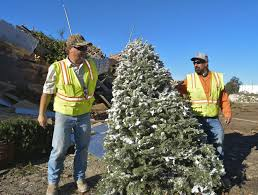 city to pick up discarded christmas trees through friday local