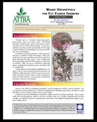 woody ornamentals for cut flower growers publication summary