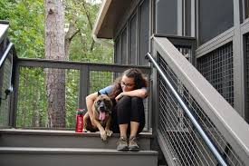 state with most dog owners 2016 stay in these cozy cabins with your dog at georgia state parks