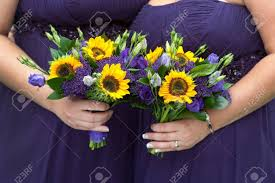 sunflower bouquets bridesmaids in purple dresses with sunflower bouquets stock photo