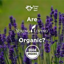 are young living essential oils organic