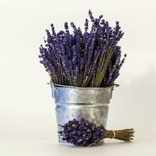 lavender bouquet dried lavender bouquets s decor