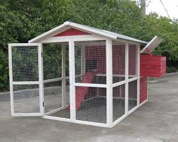 coops u0026 feathers medium walk in chicken home 220 55 by innovation