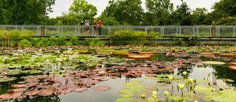 garfield park conservatory u2013 garfield park conservatory alliance