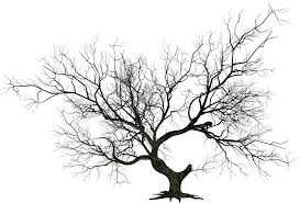 halloween tree clipart png