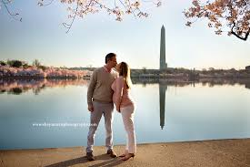maternity photographers gorgeous cherry blossom maternity session washington dc