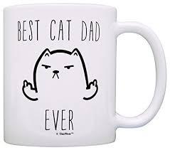 imagenes groseras de gatos divertido gato regalos mejor gato papá gato grosero siempre