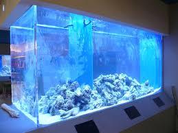 custom aquarium fish tanks aquarium custom