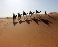 a camel ride in the sahara desert casts long shadow startribune com