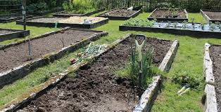permaculture principles observe your land before you plant anything
