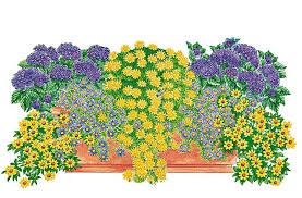 balkon grã npflanzen balkonpflanzen set leuchtkraft kaufen otto