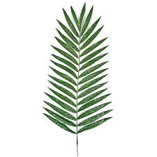 palm fronds for palm sunday 5 palm sunday decorations for your home