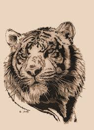 download tattoo design tiger danielhuscroft com