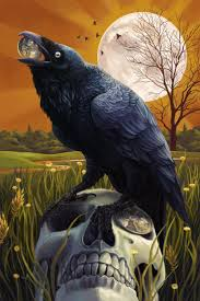 halloween background crow 117 best crows and ravens images on pinterest crows ravens the