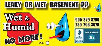 home basement ca